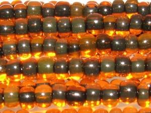 ブラックライントランスオレンジ
